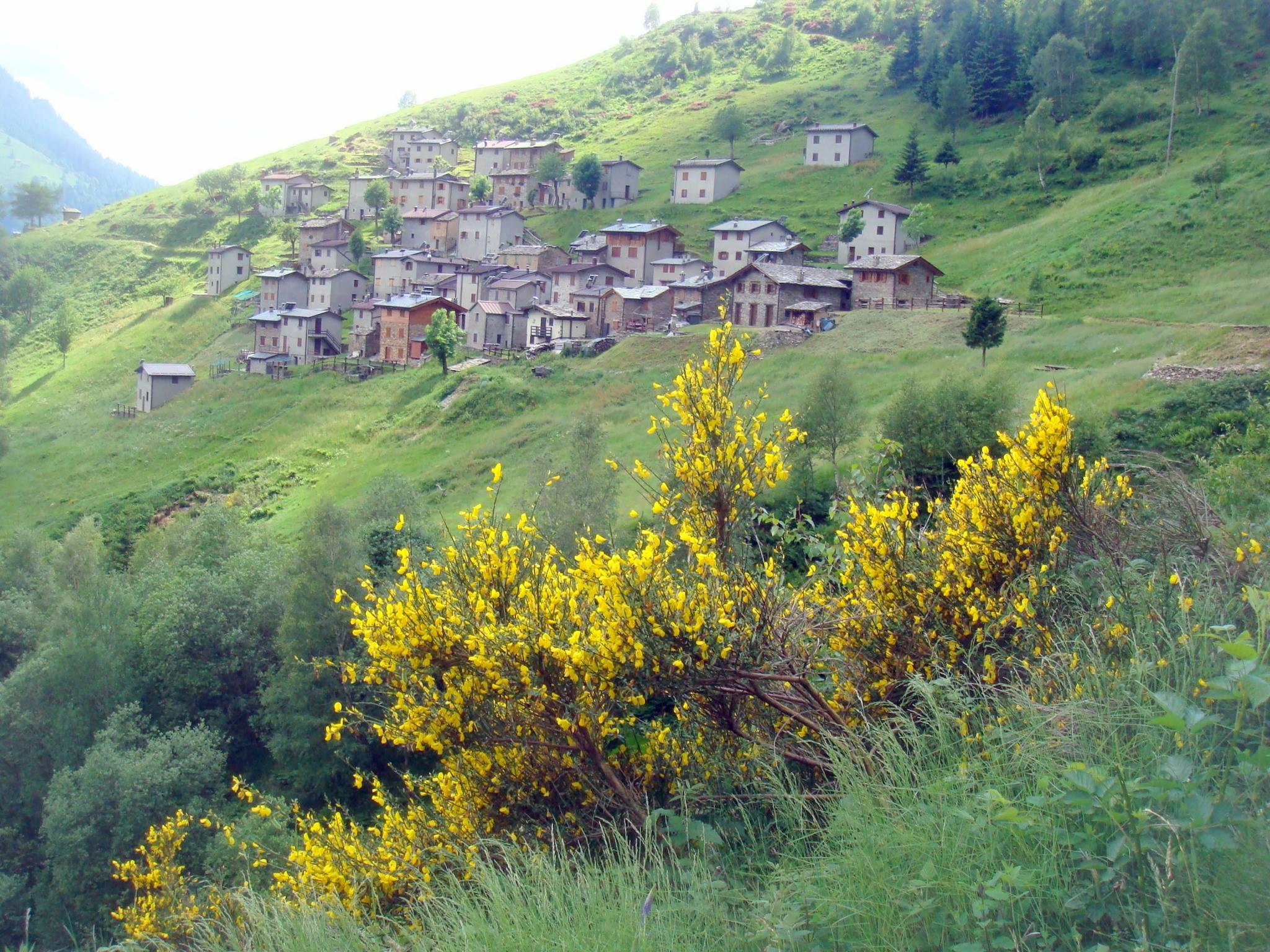 Da Premana all'Alpe Premaniga