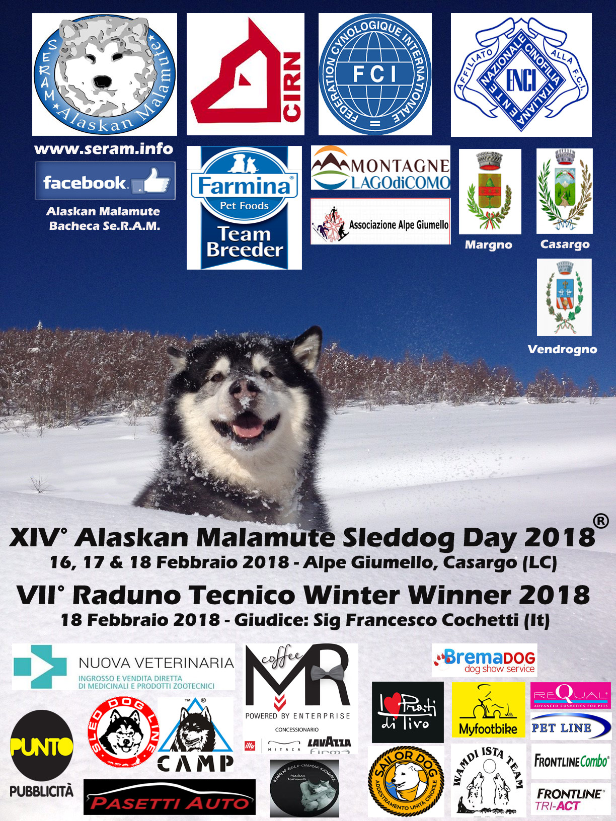 XIV Alaskan Malamute Sleddog Day a Casargo