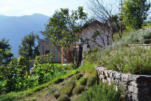 Azienda Agricola e Agrituristica La Zia Berta
