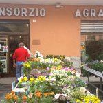 Il Consorzio Agrario di Introbio