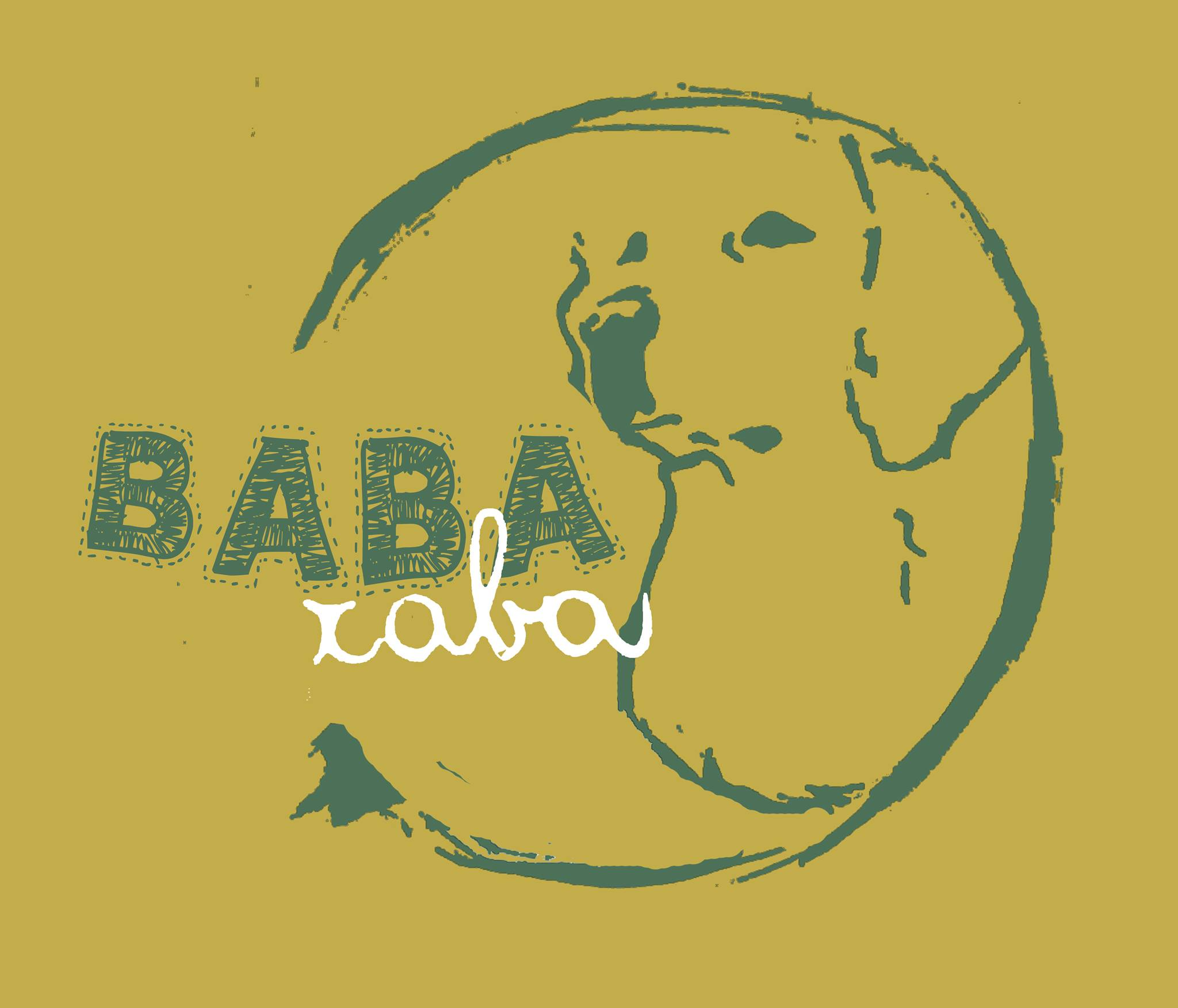 Babaraba attività e servizi per amici a 4 zampe