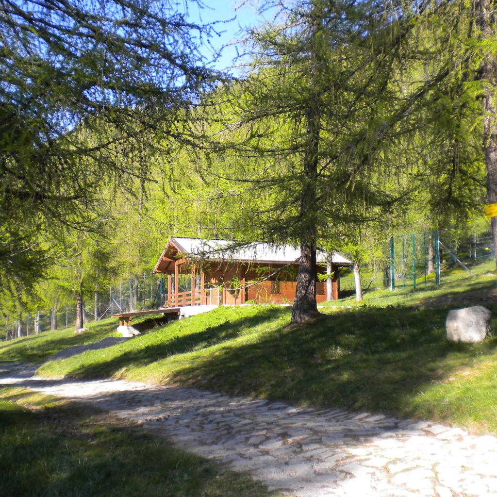 Il Bosco del Cimone area faunistica naturalistica