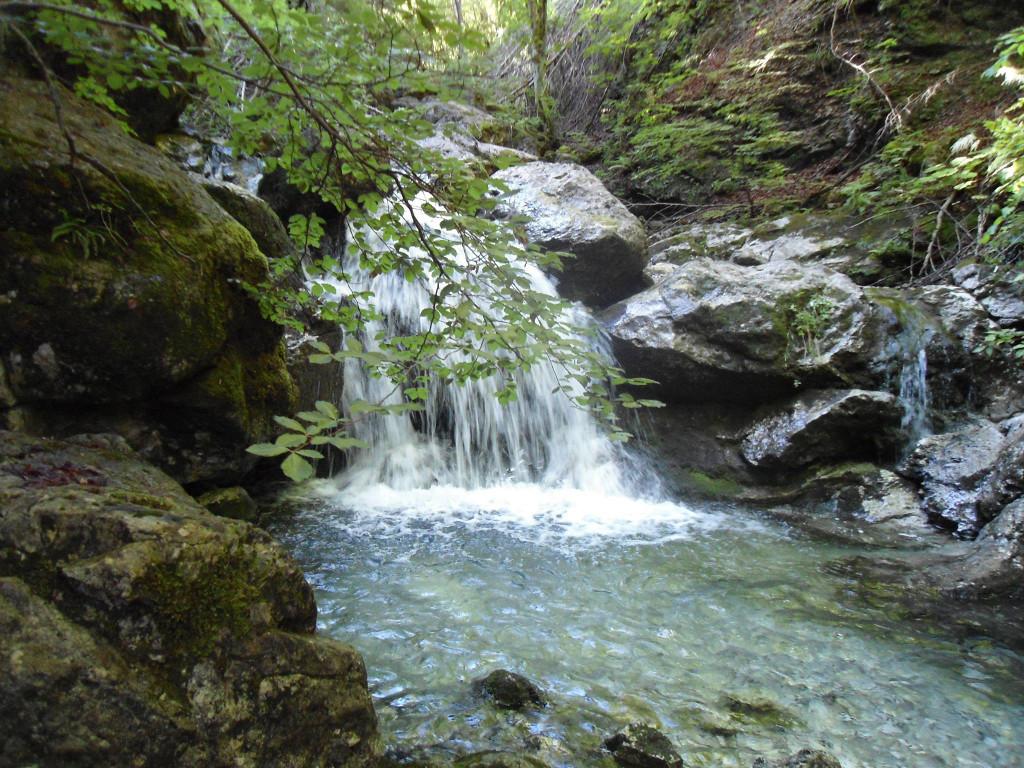 Torrente Valle Faggio e area pic nic a Moggio