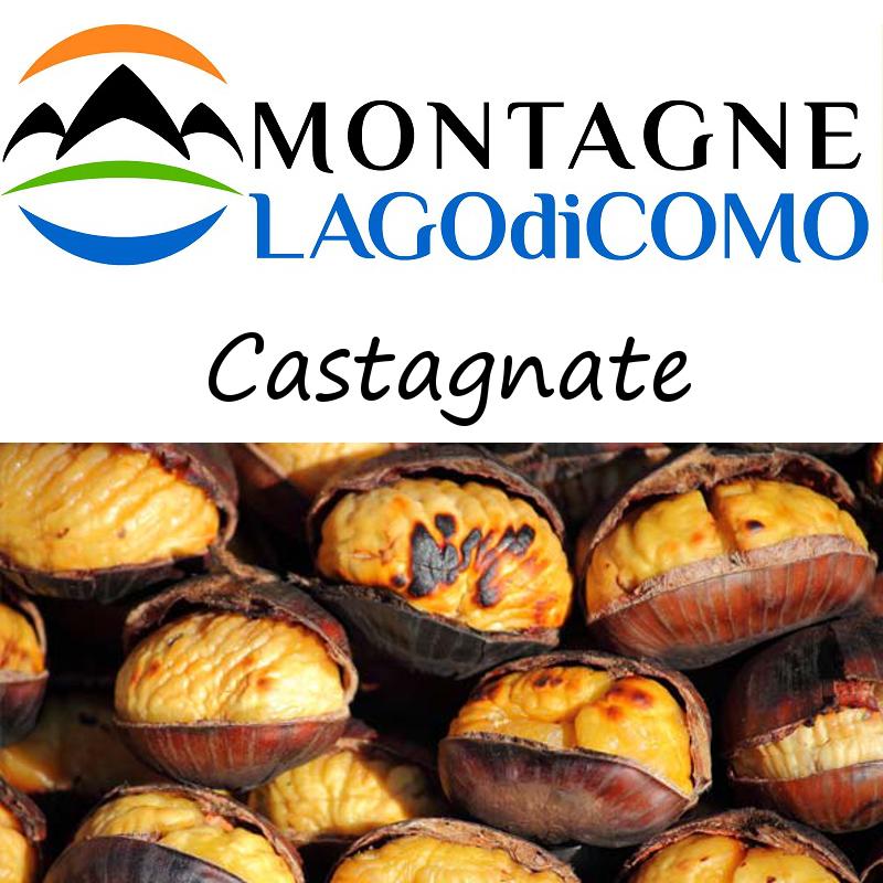 Castagnate sulle Montagne Lago di Como
