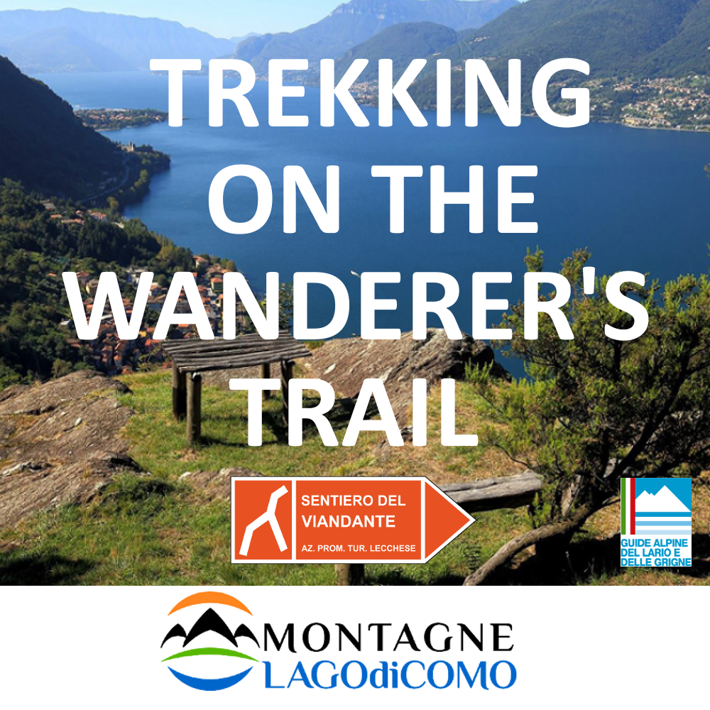 Trekking on Wanderer's Trail with guide